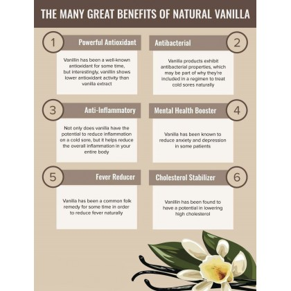 Vanilla Infused - Herbal Extracts 30ml